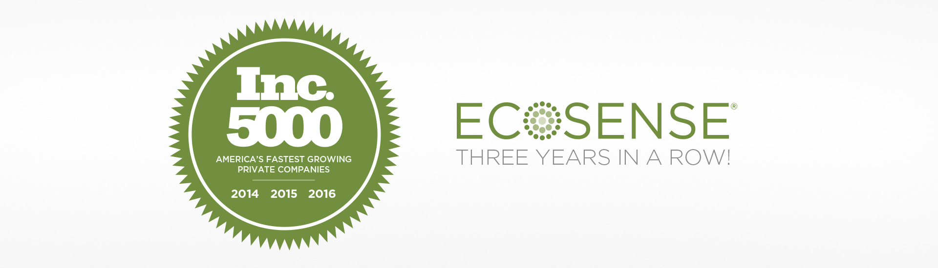 ECOSENSE INC 5000 Three Years In A Row